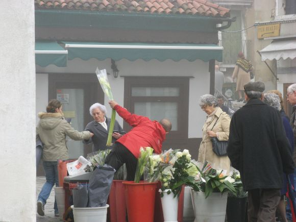 And speaking of flowers, here the seller is in red and the bloom is white.
