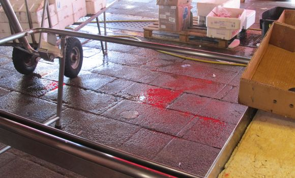 This isn't blood, nor is it paint.  It is the color reflected from the red awning at the Rialto fish market.